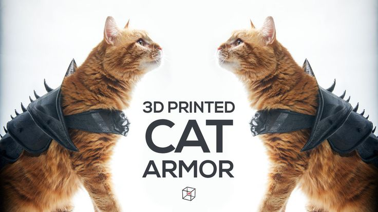CAT+ARMOR+by+PrintThatThing.
