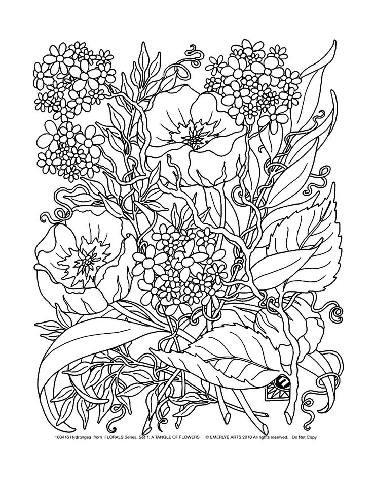 72 best iColor  - copy coloring pictures of flowers and trees