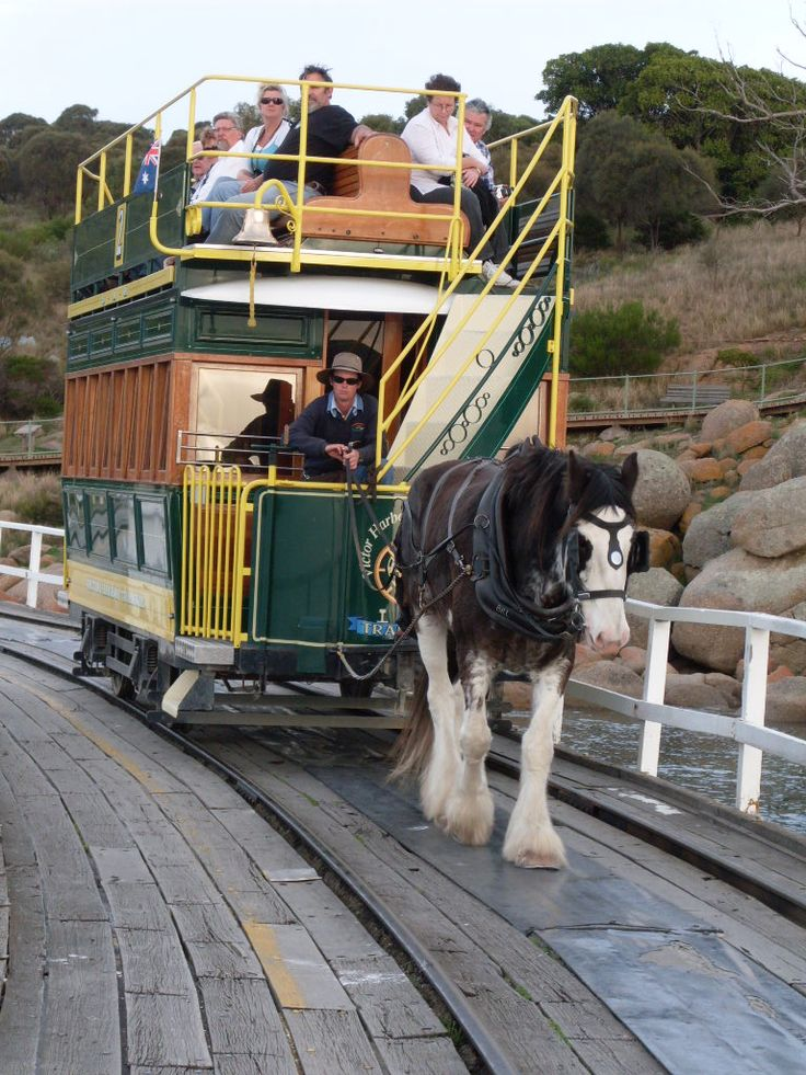The tram at Victor Harbor on the causeway between Granite Island and Victor Harbor • South Australia • Adelaide's best