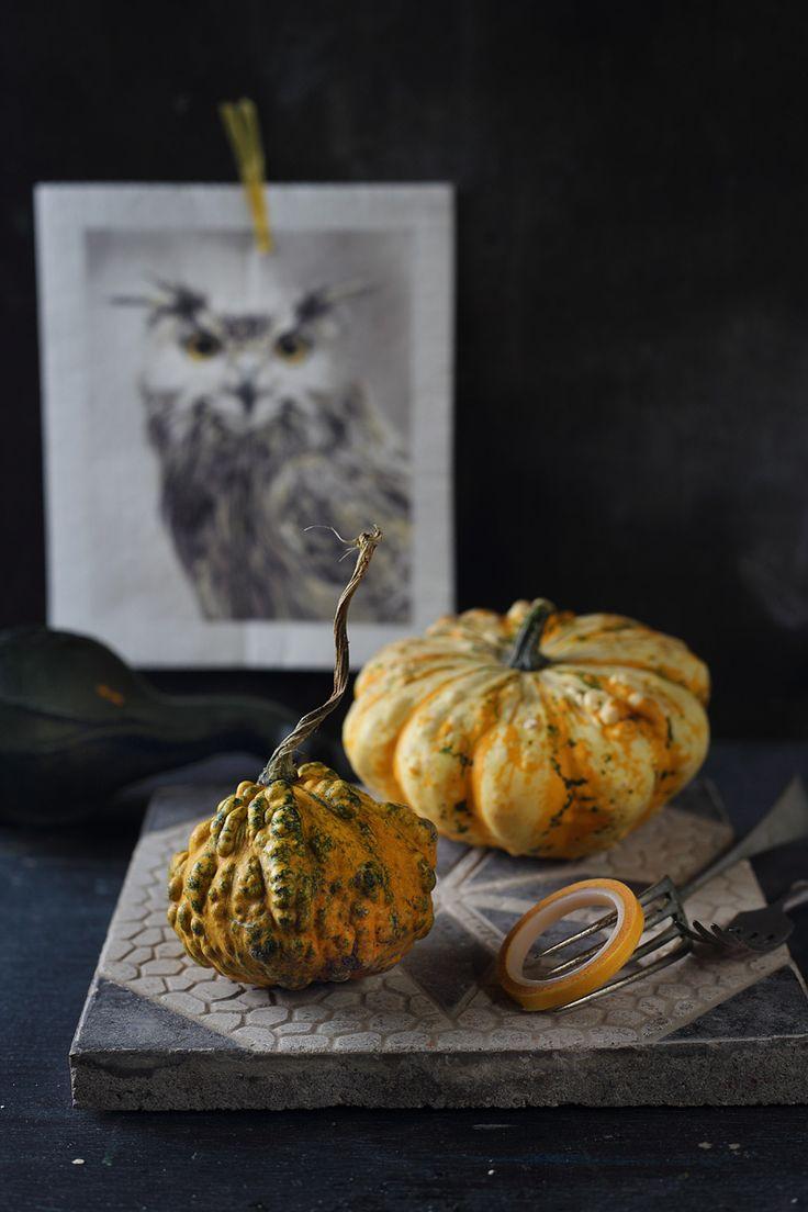 pumpkins / Zita Csigó Photography&Styling