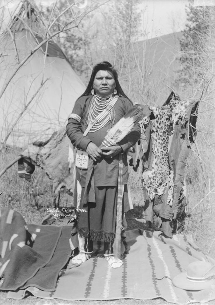 Julius in Cayuse Native Dress with Ornaments and Holding Fan, Leopard Skin, Blankets, and Tipi Nearby - Moorhouse - 1900