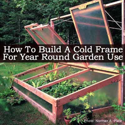How To Build A Cold Frame For Year Round Garden Use--build a little taller, with steeper pitch for roof, easier to open and won't catch as much snow.