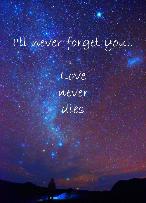 I'll never forget you...Love never dies. Int he vast configuration of the universe, love is really all there is.