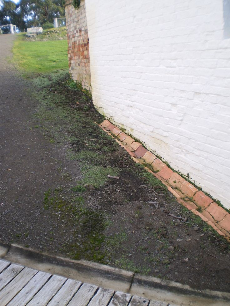 What is Rising Damp? How to Manage Rising Damp - practical tips http://www.miteyfresh.com.au/rising-damp-solutions