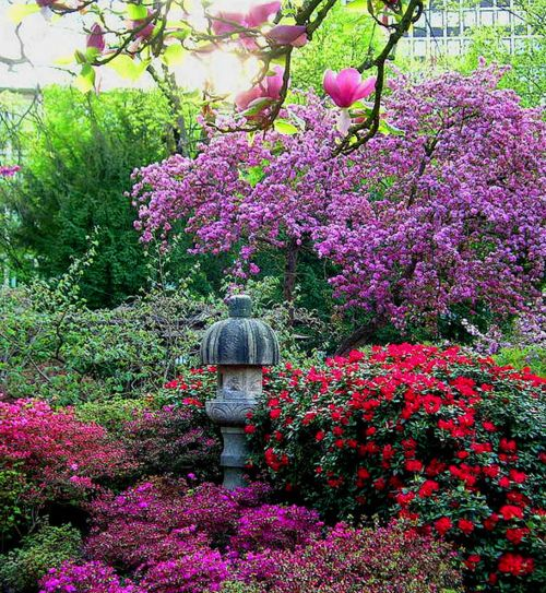 Our 8 Best Spring Decor Ideas Home Tour: 1000+ Images About Garden Passions On Pinterest