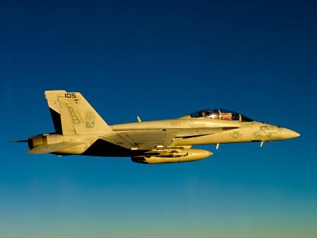 An F/A-18F Super Hornet assigned to the Red Rippers of Strike Fighter Squadron (VFA) 11 displays the national ensign in the cockpit. VFA-11 is embarked aboard the aircraft carrier USS Enterprise (CVN 65), which is deployed to the U.S. 5th Fleet area of responsibility conducting maritime security operations, theater security cooperation efforts and support missions as part of Operation Enduring Freedom. (U.S. Navy photo by Lt. Cmdr. Josh Hammond/Released)