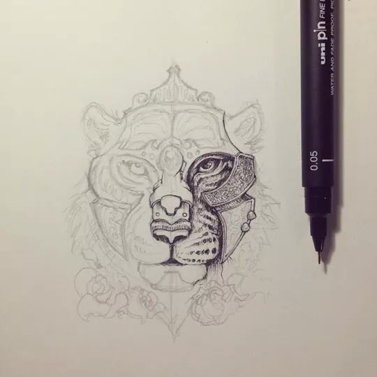 1000 Images About Drawings On Pinterest Sea Turtles