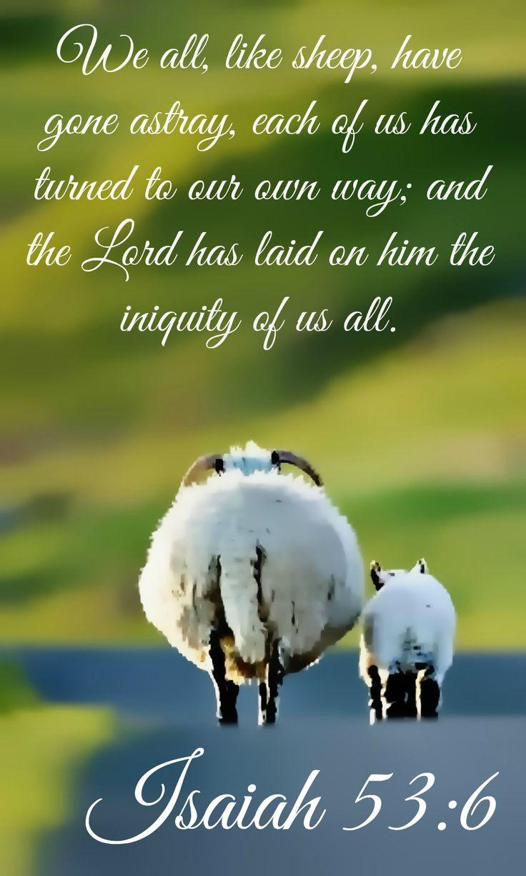 53 Best F U N N Y Images On Pinterest: 635 Best Bible Scripture On Pictures Images On Pinterest