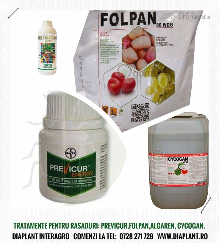 TRATAMENTE PENTRU RASADURI: PREVICUR,FOLPAN,ALGAREN, CYCOGAN. Comenzi la tel: 0728 271 728 DIAPLANT - Mereu la dispozitia dvs.! Seminte - Pesticide - Ingrasaminte #pesticide #ingrasaminte #seminte http://diaplant.ro/