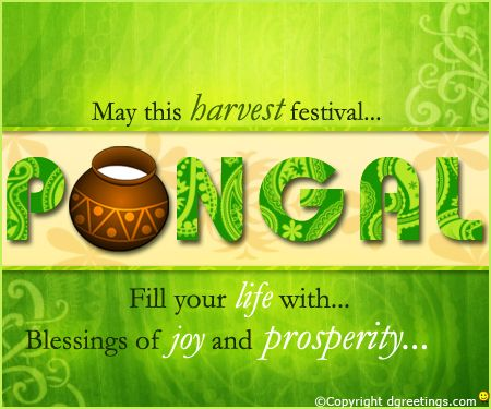 Dgreetings - Send best wishes to your friends on Pongal with this card.