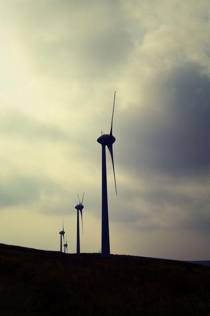 Hammars Hill windfarm