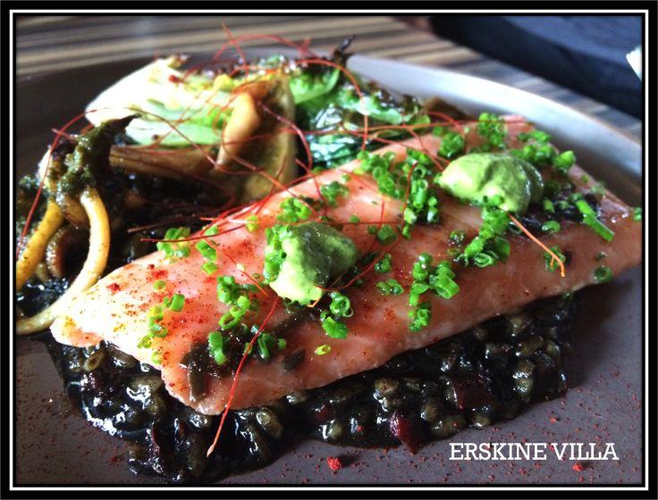 Sous vide salmon, aros caldoso nero, slow cooked cuttle fish, mojo verde.