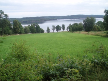 A great view, that's what we see during our holidays in Sweden!