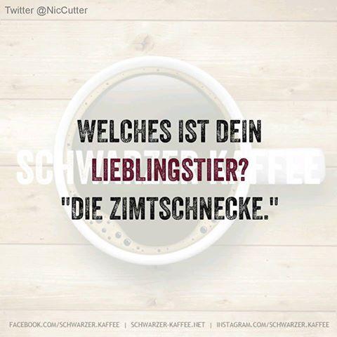 SPRÜCHE - SCHWARZER-KAFFEE