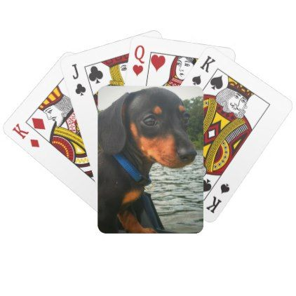 Pomme De Terre Lake Puppy Playing Cards - dog puppy dogs doggy pup hound love pet best friend