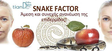 """Σειρά""""Snake Factor"""" της Brand TianDe Καλλυντικά, 40+ για διόρθωση των αλλαγών του δέρματος, με βάση, το έλαιο φιδιού Μαμούσα ! Συνεργασία της παράδοσης της Ανατολικής ιατρικής και των καινοτόμων εξελίξεων! -ενεργοποιεί την παραγωγή κολλαγόνου -συσφίγγει το δέρμα ορατά -εμπλουτίζει το δέρμα με υγρασία και βιταμίνες -μειώνει την μελάγχρωση -επιβραδύνει τη διαδικασία γήρανσης -ενεργοποιεί τις μεταβολικές διαδικασίες"""