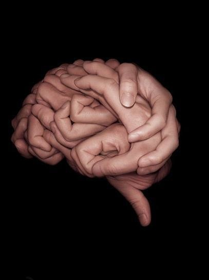brain. artist unknown.