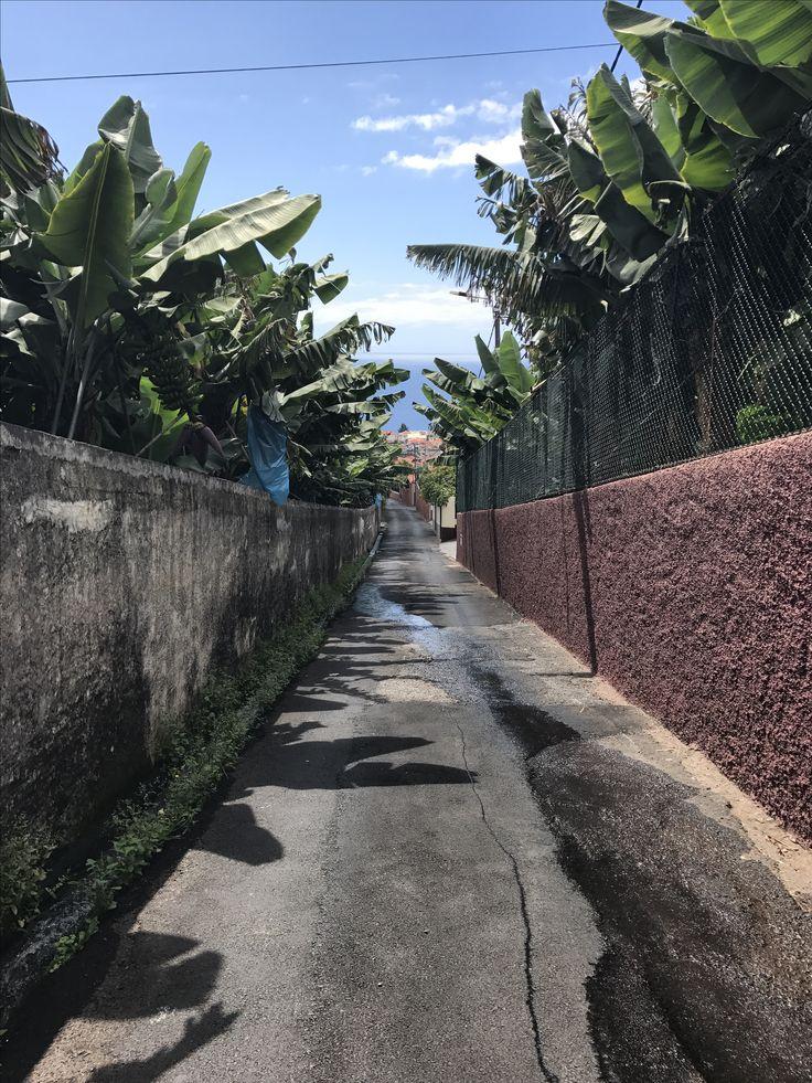 Street in Chavelholândia!