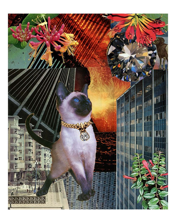 Aries, of the StarCats zodiac series, features a brave young Siamese. The StarCats symbolically portray the twelve astrological signs through different cats in fantastical environments. Aries is the first sign of the zodiac, and represents people born between March 20th and April 19th.  Archival print is from my original collage made from handcut vintage images. Choice of three print sizes: 8X10 semigloss finish, 11X14 matte finish, or 11x17 matte finish (this one includes text, see 2nd…