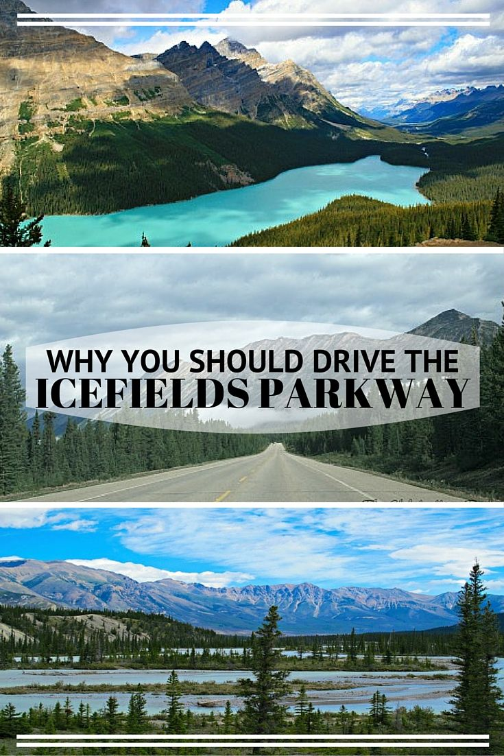 Why You Should Drive the Icefields Parkway - including recommendation for GPS app