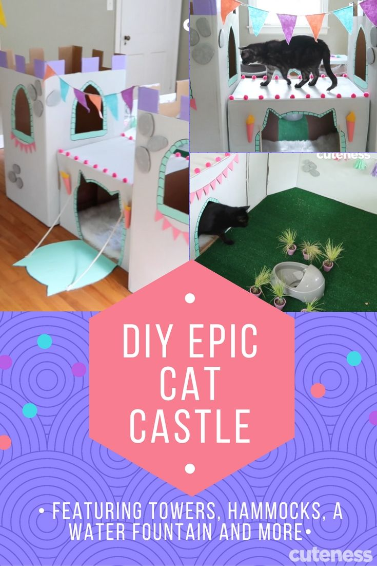 This EPIC cat castle is made of cardboard and just a few other materials. It includes a fountain, hammocks, a drawbridge, and towers. Your cat will LOVE IT!!!