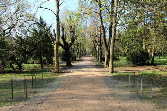 Leise-Park | Berlin-Prenzlauer Berg Germany | gruppe F landscape architects #cemetery #park #gravel #path #decomposed granite #granitic gravel