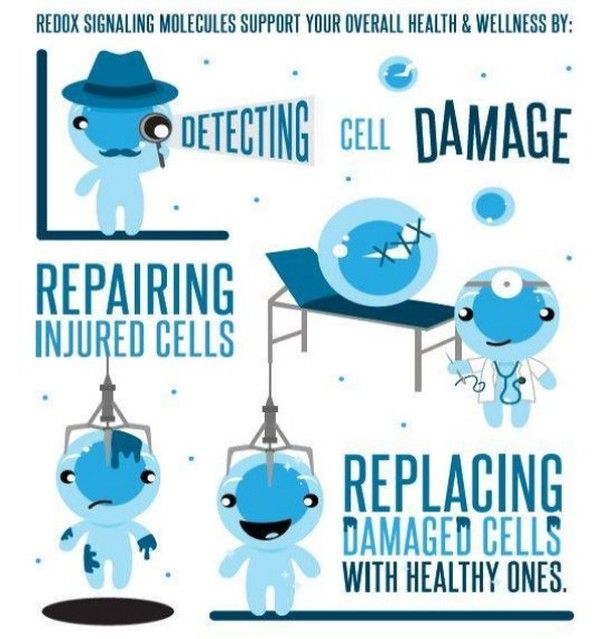The Redox Signaling Molecules in ASEA support your overall health & wellness by Detecting Cell Damage, Repairing Injured Cells and Replacing Damaged Cells With Healthy Ones.   NO OTHER PRODUCT HAS REDOX SIGNALING MOLECULES.    To learn more go to  http://immanis.teamasea.com    and  www.6minutes6reasons.com