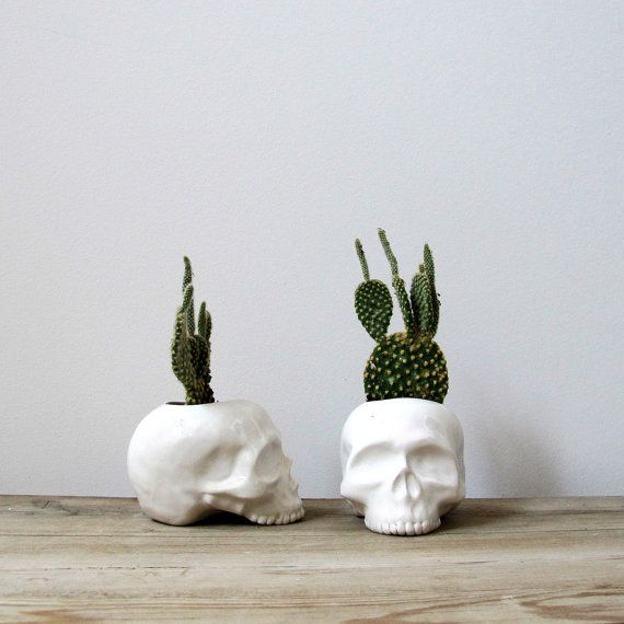 YES! THESE CAN BE USED AS A VASE, VOTIVE OR A PLANTER! This is an original design you will not find elsewhere! Each skull is slip cast out of ceramic stoneware and covered in a glossy white glaze. These are perfect for shop displays, special halloween parties or decorations, even to add that naturalist look to your bookshelves. This listing is for ONE skull. ● gorgeous gloss white glaze inside and out. ● measures approx. 4 1/2 long X 3 tall X 3 wide. ● arrives in a lovely package, perfect…