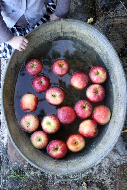 fall: Votive Diy, Apples Votive, Diy'S, Barrels, Anthropology Apples, Fall Fun, Fall 2015, Fall Anthropology, Eye