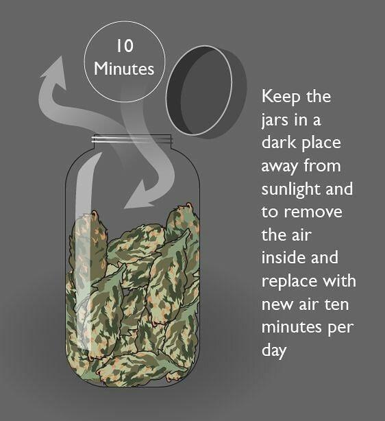 Mantenga los frascos en un lugar oscuro lejos de la luz del sol y retire el aire del interior y reemplácelo con aire nuevo por diez minutos por día...#iloveweedpa #panama420 #420 #smokeshop #cafe #bluntwrap #rollin #rollingpapers #phillies #porros #bobmarley . #panama #colon #panamaoeste #panamaeste #veraguas #santiago #chiriqui . #ciudadpanama #panamaweed . #weed #smokeweed #ganja #reggae #rawpapers #highlighter #pty #pty507 #visitpanama #tvnpanama