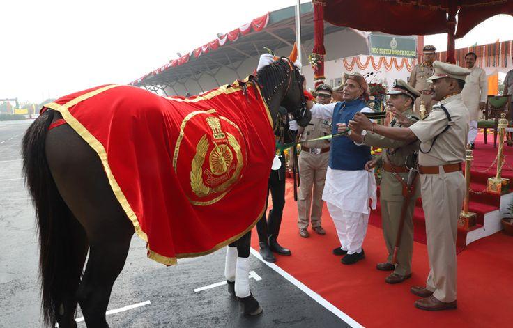 कल केन्द्रीय गृह मंत्री श्री राजनाथ सिंह भारत-तिब्बत सीमा पुलिस (आईटीबीपी) की 56वीं स्थापना दिवस परेड में आज आईटीबीपी की 39वीं बटालियन, सूरजपुर, ग्रेटर नोएडा में शामिल हुए। इस अवसर पर संस्कृति राज्य मंत्री (स्वतंत्र प्रभार) और पर्यावरण, वन तथा जलवायु परिवर्तन राज्य मंत्री डॉ. महेश शर्मा, आईटीबीपी के महानिदेशक श्री आर के पचनंदा और …