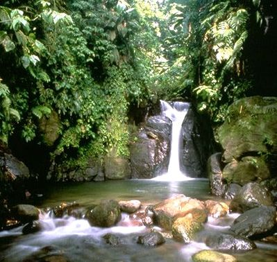 Waterfalls in Martinique