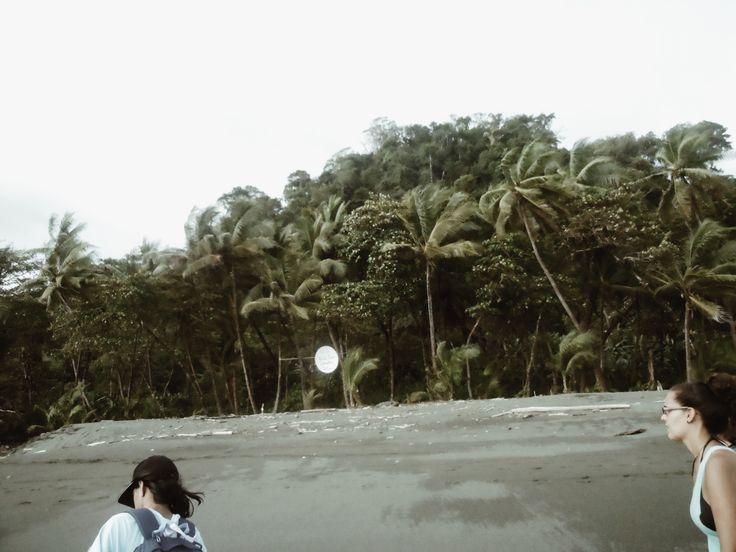 Carate Beach, Costa Rica || @esha__ #costarica #travel #centralamerica #backpacking #osapeninsula #caratebeach