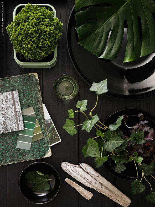 Tafel van bovenaf gezien met groene planten