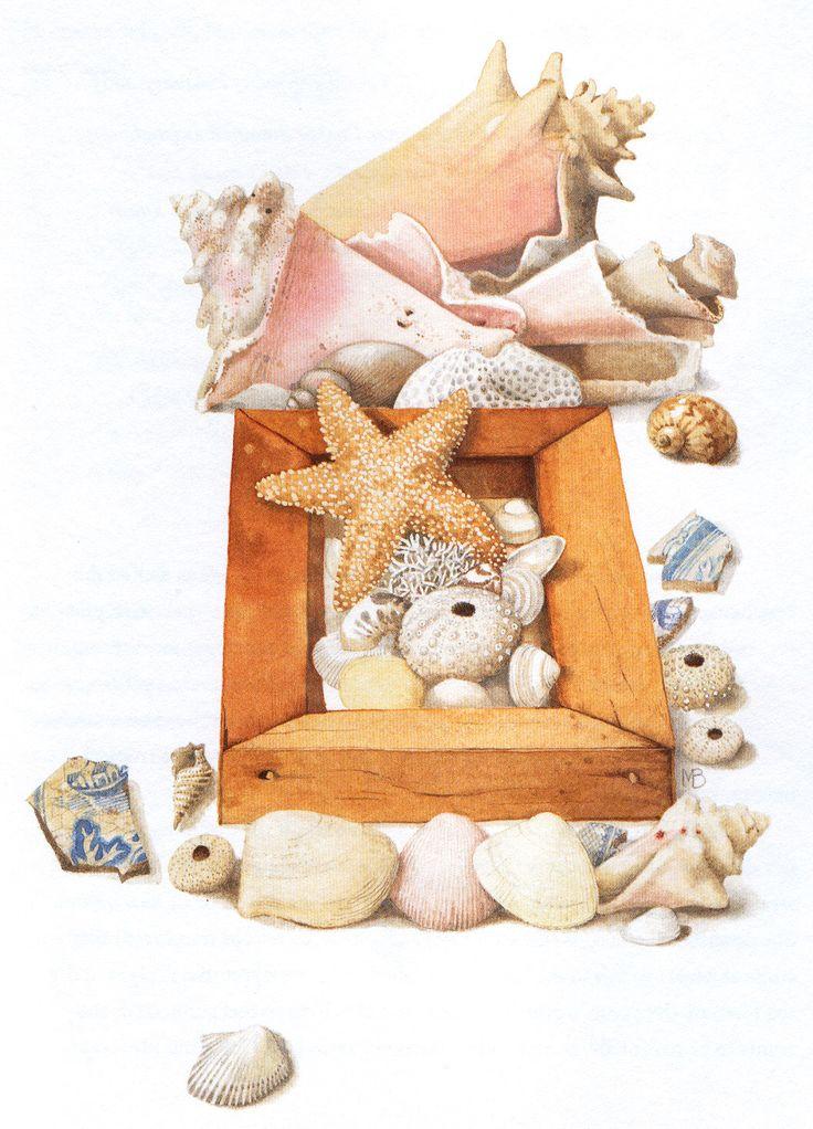 Marjolein Bastin: Sea Stars, Favorite Artists, Sea Shells, Bastin Art, Artists Marjolein, Artists Work, Natural Sketch, Marjolein Bastin, Seashells