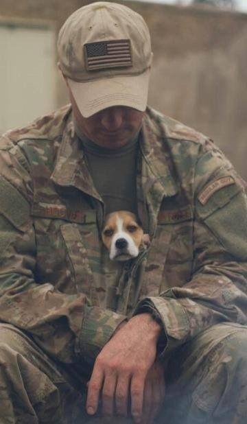 Is that standard issue? @Grant L Mitchell L Mitchell L Mitchell L Mitchell Myers  #puppybattle