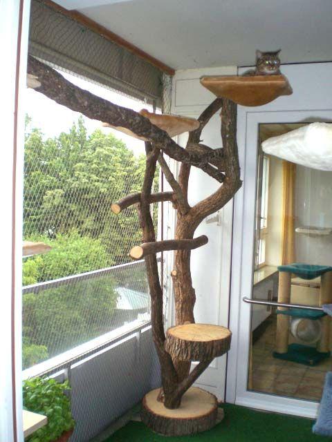 Naturkratzbaum, kleine Kletteranlage