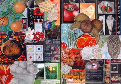 This is a collage created from the sketchbook of a student who achieved 100% at IGCSE. Her first unit was Natural forms The work involved considerable research, investigation and experimenting with different media and techniques. She also had to reference artists related to the unit topic and create an original outcome in response to her findings.