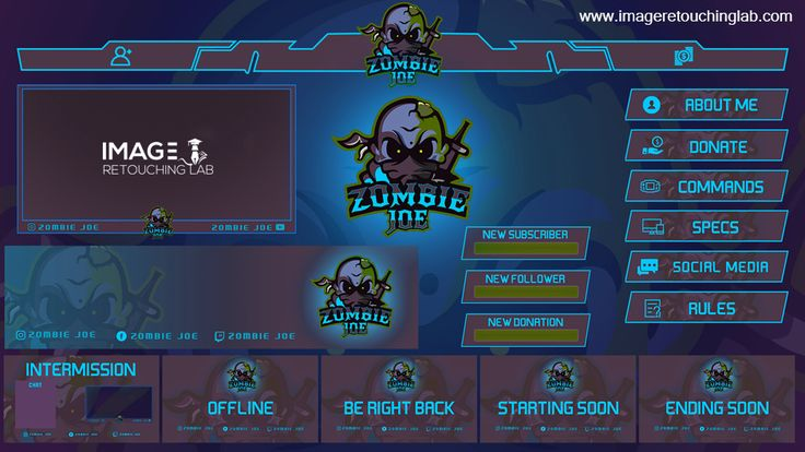 Design a professional twitch logo overlay and stream