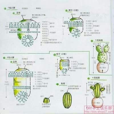 Schema cactus