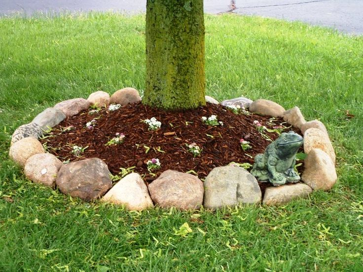 Rock Border Around Trees In The Very Front Of The House (in Front Of  Retaining