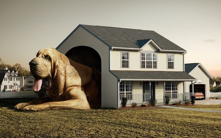 Mansions Style Luxury Dog House