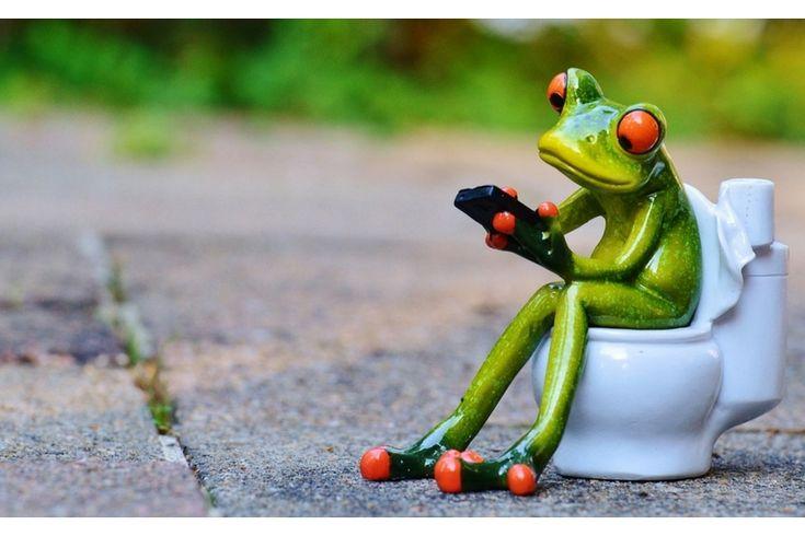 Cambiare copriwater: come riconoscere il proprio sedile wc in 3 passi!