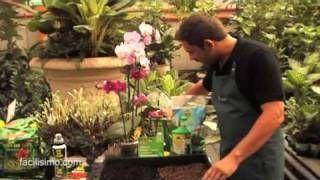 curso maquinaria de jardineria - YouTube