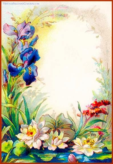 Vintage Field & Garden: Illustrated Border: Flowers in a Victorian Cottage Garden Gift Tag (#4 of 6)