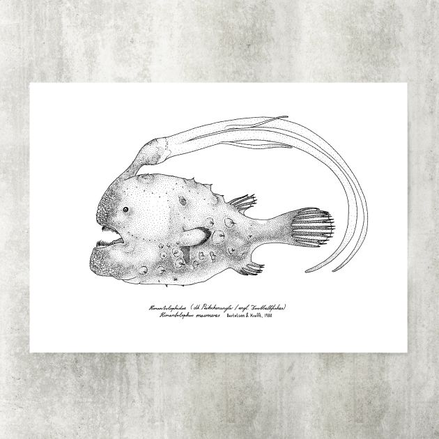 Football Anglerfish Hand Signed Two Color Scree Print From The Series Deep Sea