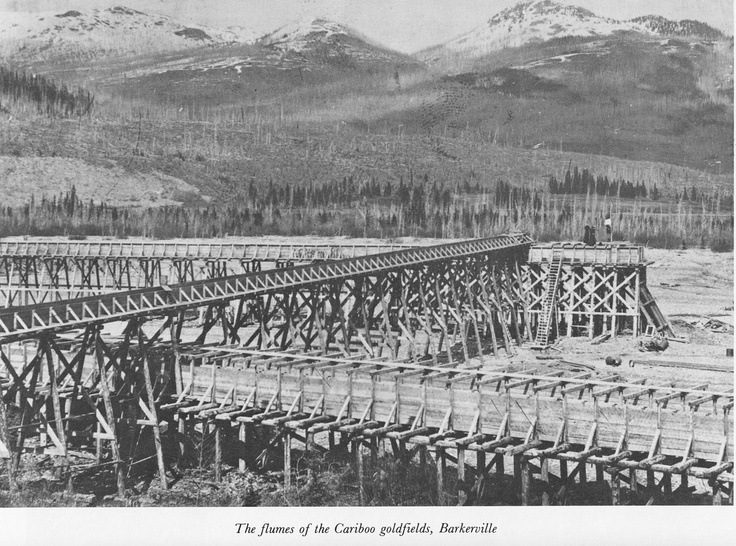 The flumes of the Cariboo gold fields Barkerville