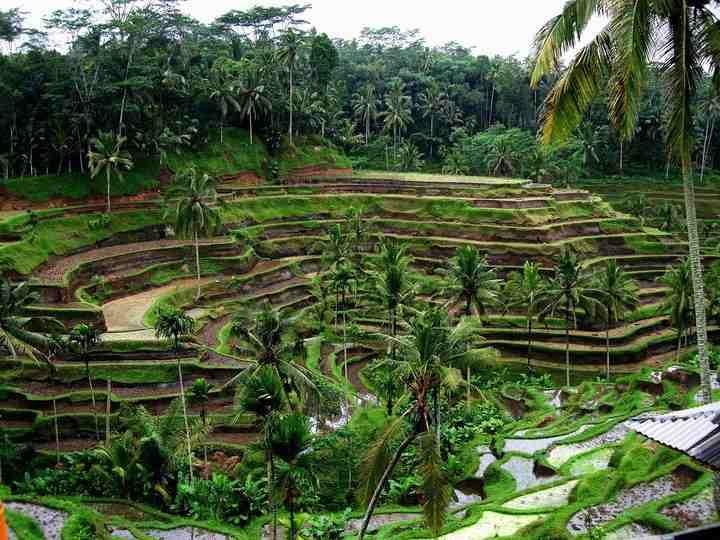 Indonézia | Körutazás Indonéziában Pihenés Az Óceánparton | 14 Napos Körutazás Jáva És Bali Szigetén | Indonézia Utazási Iroda