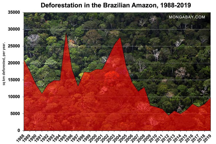 Experts Blame Bolsonaro For Surge In Deforestation Warn Of Worse To Come Amazon Deforestation Deforestation Amazon Rainforest