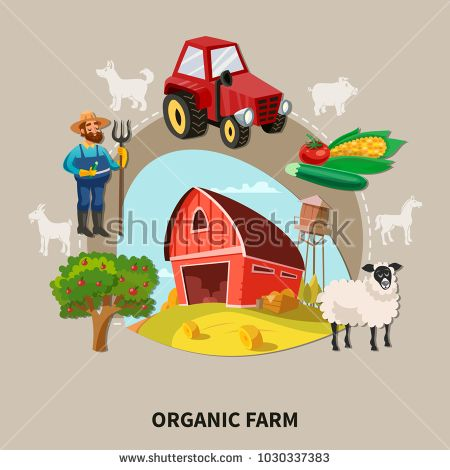 Stock Vector: Farm cartoon composition organic farm headline with buildings elements and equipment vector illustrationK